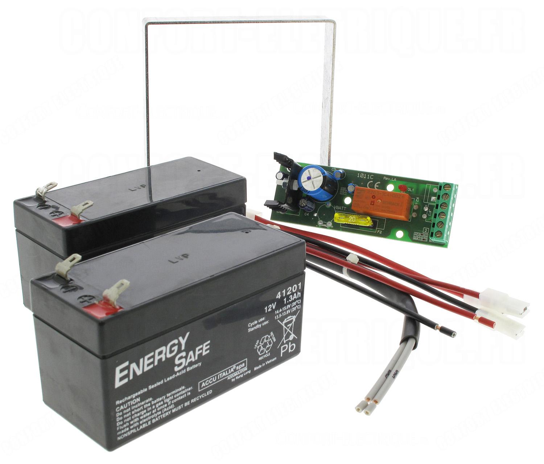 kit batterie 24 volts pour bft virgo lynx 138 00. Black Bedroom Furniture Sets. Home Design Ideas
