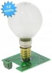 Carte lumière fixe 12 Volts DC pour boitier GIBIDI DSL2000