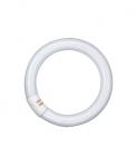 Tube fluorescent circulaire - Osram Lumilux T9 C - 22 Watts - G10Q - 4000K