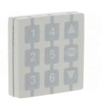 Télécommande NICE Way module émetteur WM006G