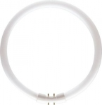 Tube fluo Master TL5 Circulaire C-T5 40 Watts CC 840 2GX13 4000K
