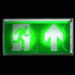 BAES+BAEH évacutation ECO1 à LEDS 45 Lumens Legrand SATI IP43-IK07