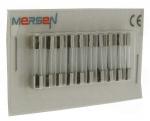 10 fusibles en verre 5 x 20 250V 16 Ampères type T (Temporisé)